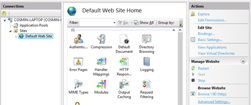 IIS Manager Default Website